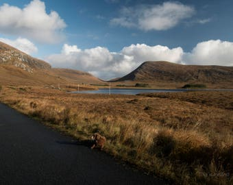 Ireland Photography, Glenveagh National Park Donegal