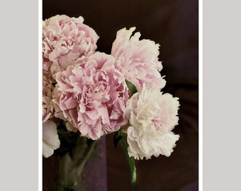 Peony print, dark flower photo print, shabby chic wall art still life floral wall decor artwork, large wall picture or canvas wrap wall art