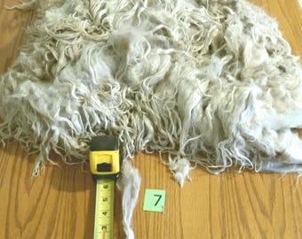 2# 7 oz white raw long suri alpaca #7