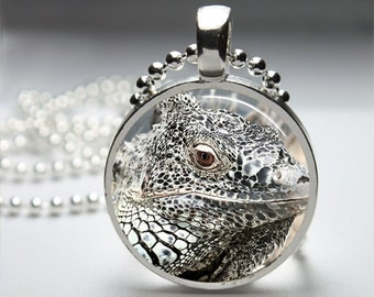 White Reptile Photography Round Pendant Necklace with Silver Ball or Snake Chain Necklace or Key Ring