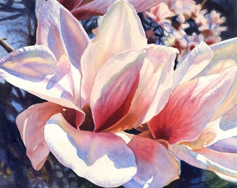Magnolia Original Watercolor Painting by Cathy HIllegas, 16.7x21.5, watercolor floral painting, pink white tulip magnolia, gifts for her