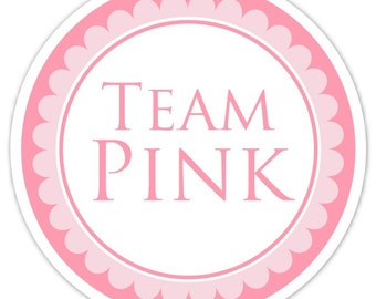 Gender Reveal Stickers, Team Pink Stickers, Gender Reveal Labels, Baby Shower Stickers