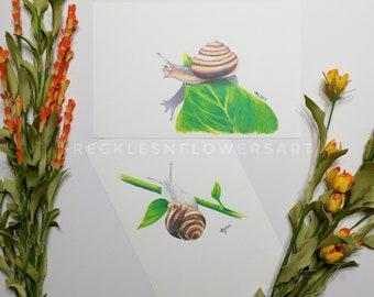 Snails, Snail Print Set, Garden Print Set, 5x7 Print Set, Set of 2 Prints, Snail Drawing, Sunroom Decor, Garden Snails, Garden Wall Art, Bug