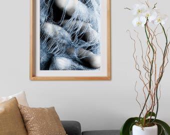 Pressures Series Print 004.  Black and White Photography, print, colored, decor, wall art, artwork, large format photo.