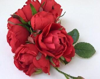 Briar Rose, Red