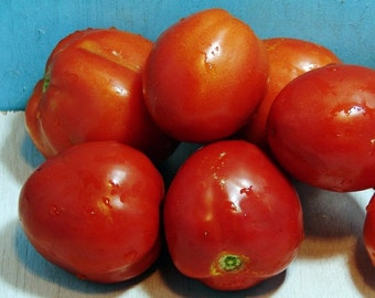 Mother Russia Tomato Heirloom Garden Seed Non-GMO Naturally Grown Open Pollinated 30+ seeds Gardening