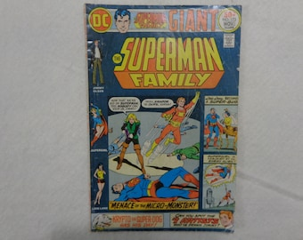 Superman Family No. 173