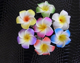 Hawaiian Plumeria Hair Clips Set of 2.