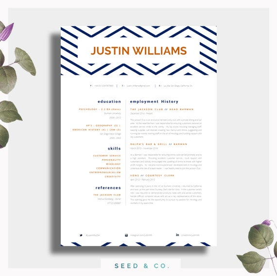 CV Template Single Page Professional CV Cover Letter