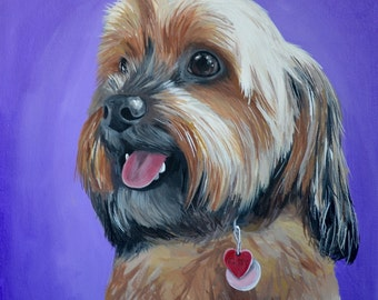8x10 size canvas Custom painted pet portrait example 8x10 size canvas Yorkie sample