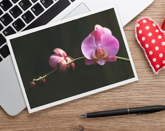 Orchid Photo Notecard, Blank Greeting Card, Photo Greeting Card, Floral Card, Note Card, Floral Photo Notecard, Stationery, Blank Notecard