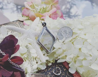 Pearl Cage Necklace Terrarium Jewelry Locket for Disney Pick a Pearl Epcot Akoya Oyster Pearl Cage Pick a Pearl Terrarium Pearl Cage Pendant