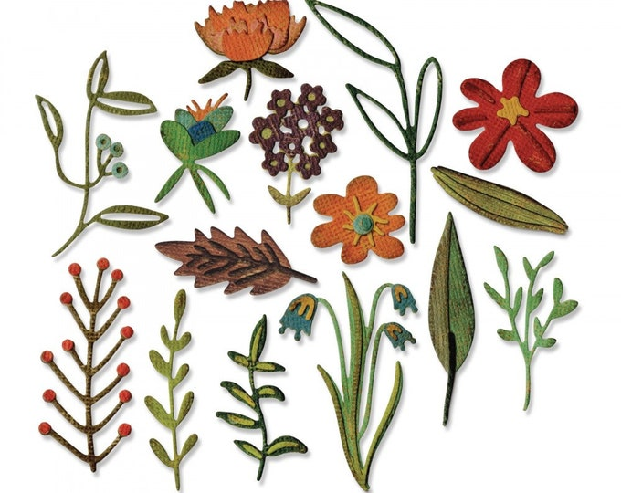 New! Sizzix Tim Holtz Thinlits Die Set 15PK - Funky Floral #2 (662701)