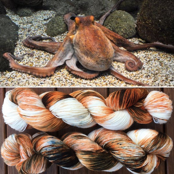Common Octopus, cephalopod inspired speckle dyed 75/25 merino nylon indie sock yarn