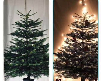 """Christmas tree curtain or decoration panel / fabric portion 56"""" x 84"""" buy two for patio doorway / fabric no longer available!!"""