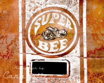 Super Bee Emblem on Orange Dodge Photograph