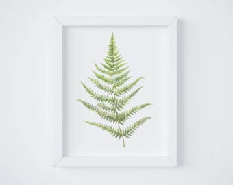 Fern No 2 Art Print - Fern painting - Fern - Fern watercolor - home decor - watercolor painting - greenery - fern art - fern leaf - leaf