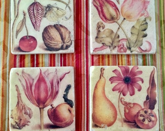 Artistic Coaster Set - Joris Hoefnagel's Classic Botanical Illustrations