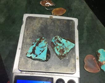 Bisbee AZ Turquoise Earrings