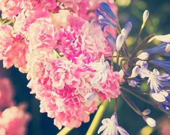 Pink Flowers - 8x10 photograph - fine art print - nature - nursery art - spring artwork - home decor