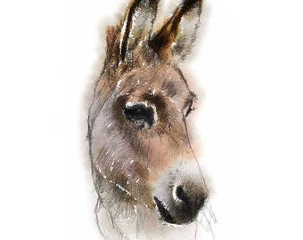 Little donkey | Limited edition fine art print from original drawing. Free shipping.