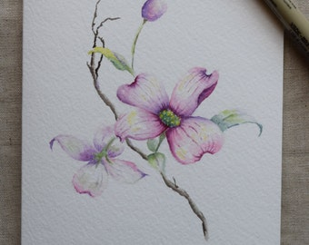 Pink Dogwood (2) Watercolor Painted Card-Print