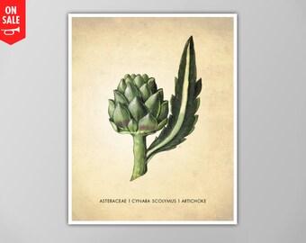 SALE - Artichoke Art Print, Artichoke Art Print, Kitchen Art Print, Natural History Kitchen Print, Artichoke Plant Kitchen Decor, Art Print