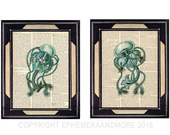 JELLYFISH art prints Natural Science marine nautical ocean sea beach wall decor green blue illustration on vintage dictionary book page 8x10