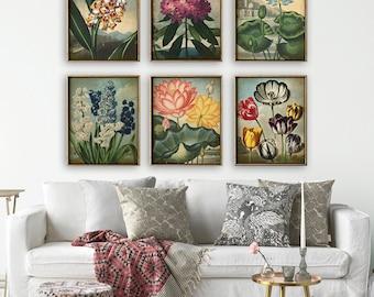 BOTANICAL print SET of 6 art prints, flower posters set, plants, botanical poster, instant collection, flower poster, flowers print set,