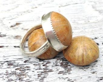 Madagascar Sand Dollar Fossil Ring sterling silver, Sand dollar ring, Fossil Ring, sterling sand dollar, Jurassic jewelry, beach jewelry