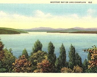 Lake Champlain, Westport Bay - Postcard - Vintage Postcard - Unused (CC)