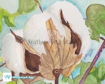 Cotton Boll, Art Print, Watercolor Painting, Original Watercolor, Wall Art, Wall Decor, Cotton, Original Painting, Art, Painting