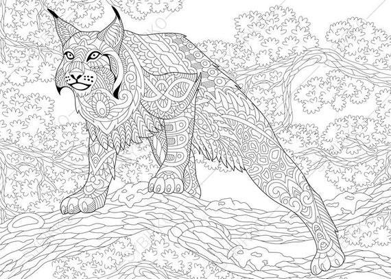 lynx coloring pages free - photo#19