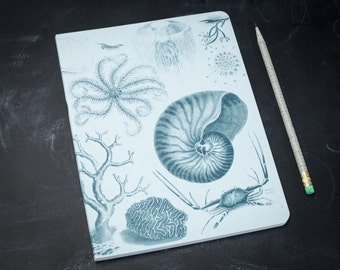 Shallow Sea Softcover Notebook | Marine Biology Science Journal, Fountain Pen, Lay Flat, Lined Recycled Paper, Shells, Ocean, Beach, Blue