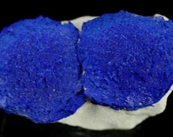 Azurite 'Suns' on matrix, Australia  Mineral Specimen for Sale
