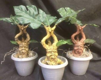 Mandrake rootling