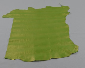 Bright green Lambskin Coupon