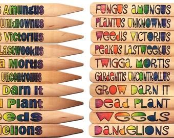 "FUNNY & ""Latin"" Garden Plant Pot Markers - 10 Rainbow1"