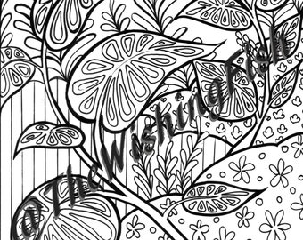 Abstract Botanical 1 -INSTANT DOWNLOAD- Colouring page