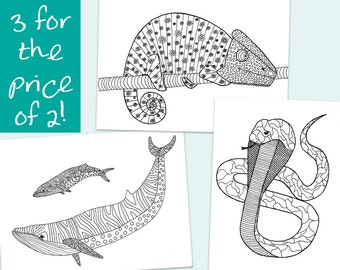 3 Printable Colouring Pages -- Patterned Chameleon, Cobra and Whales -- Instant Digital Download