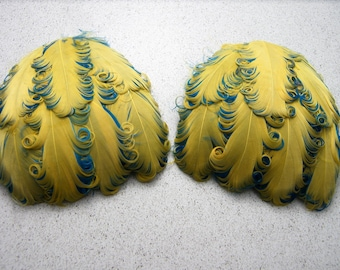 YELLOW AND TURQUOISE Curly Feather Pads, Nagorie Feathers