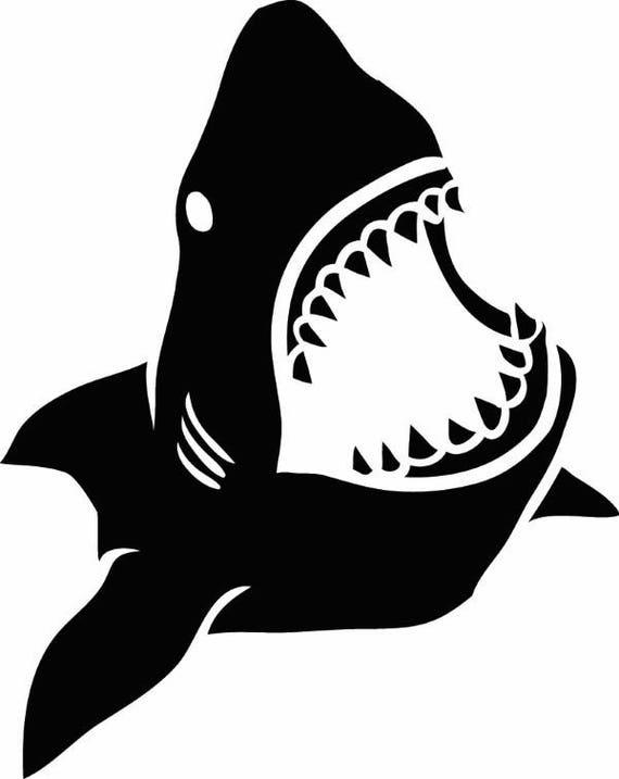 Great White Shark 1 Jaws Teeth Attack Eat Fish Prey Ocean