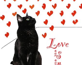 I Love You Cat Art  Print, Black Cat, Cat Lover, Wall Sayings, Engagement Gift, Wedding Gift, Quote Art, Deborah Julian