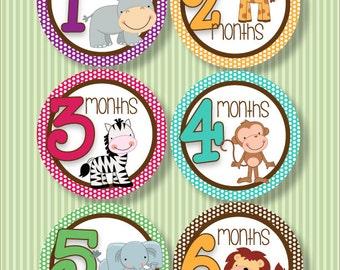 Baby Monthly Milestone Stickers - Safari Stickers
