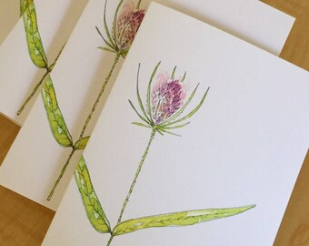 Watercolor Blank Note Cards - Wildflower Note Cards - Teasel Weed Cards - Weed Note Cards - Botanical Note Cards - Set of 6
