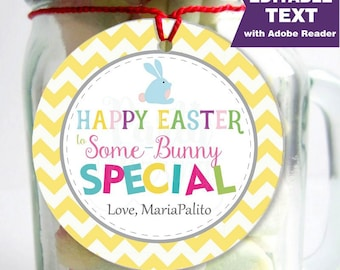 Editable Printable Easter Tag , Party Favor Sticker, Cute Some-Bunny Special Tag, Round or Square Topper, Instant Download-D824