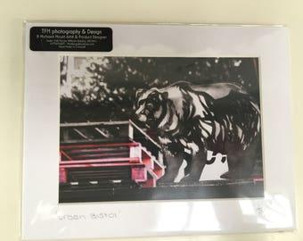 Urban Bristol- photographic Prints mounted