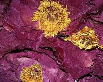 Peony Flower - 1 oz Pink Tree Peony (Paeonia suffruticosa) Organic Dried Flower