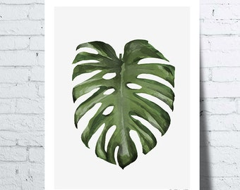 Shows Journal of Monstera (Monstera leaf), tropical wall art, photo, home décor boranique