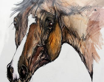 Bay horse, equine art, equestrian, cheval, horse portrait, original ink and watercolor painting
